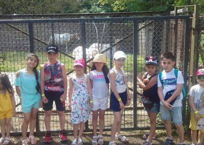 Children_Cage